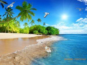 Tranh phong cảnh bãi biển đảo