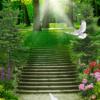 Tranh phong cảnh hàng cây, bậc thang đẹp 2966