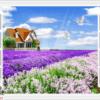 Tranh cửa sổ vườn hoa 11859
