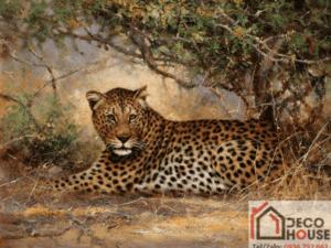 Tranh động vật 3D 52