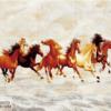 Tranh ngựa đẹp 29