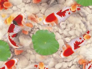 Tranh cá chép 3D đẹp 127