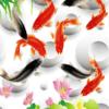 Tranh cá chép phong thủy 3D 101