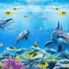 Tranh đại dương 3D 134