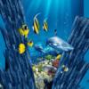 Tranh dưới đáy đại dương 7