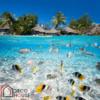 Tranh phong cảnh đại dương 15551