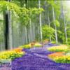 Tranh dán tường phong cảnh 3D 10419